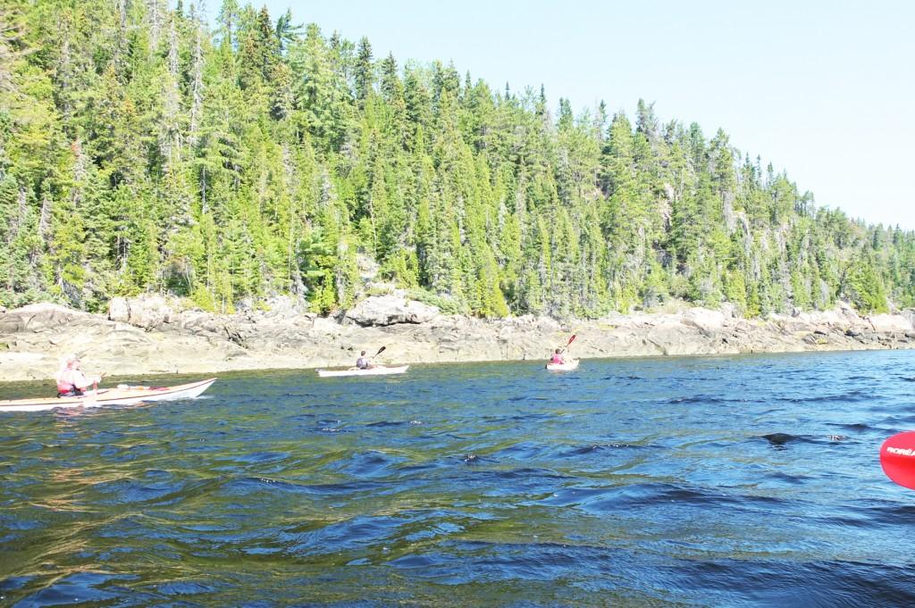 le fjord du saguenay (3)