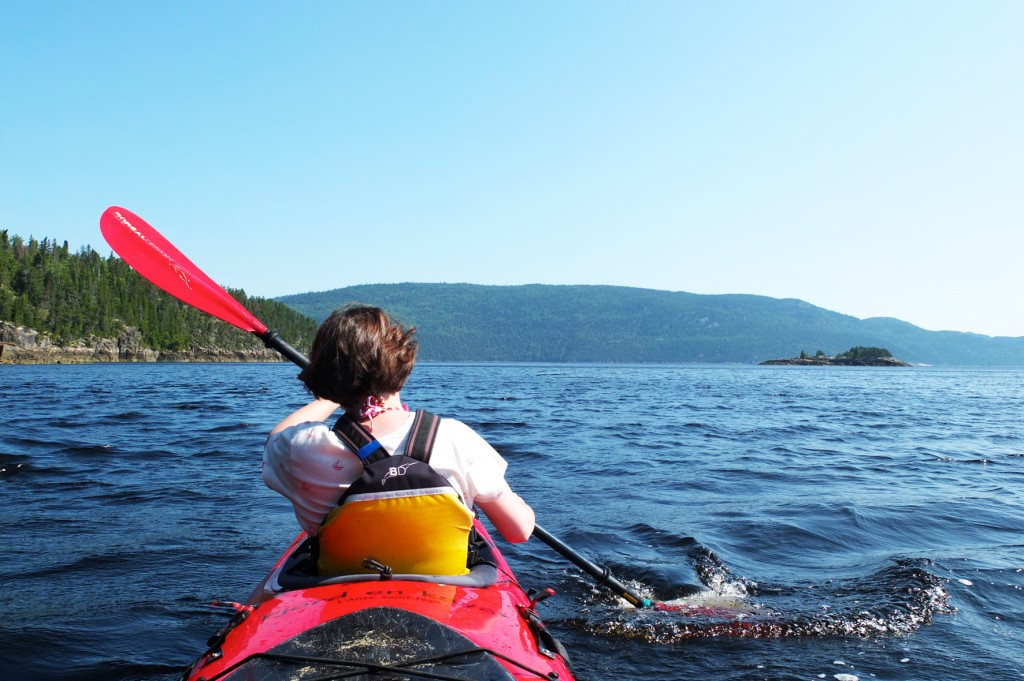 le fjord du saguenay (4)