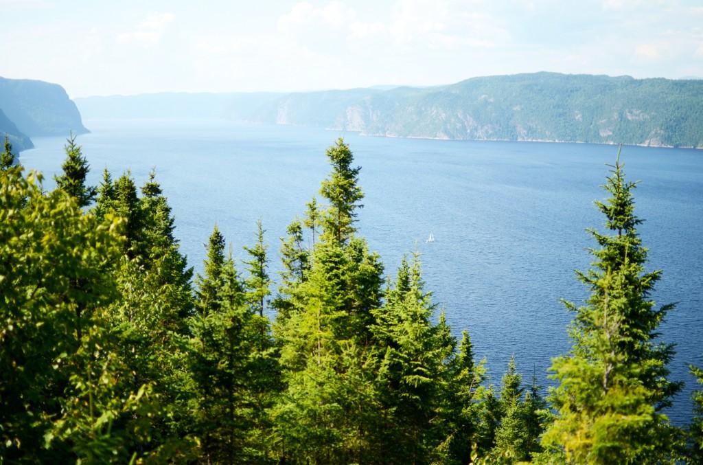le fjord du saguenay (9)