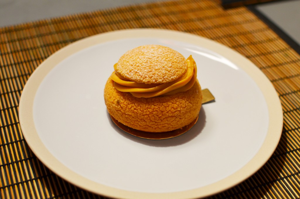 j'ai testé les gâteaux Thoumieux (4)