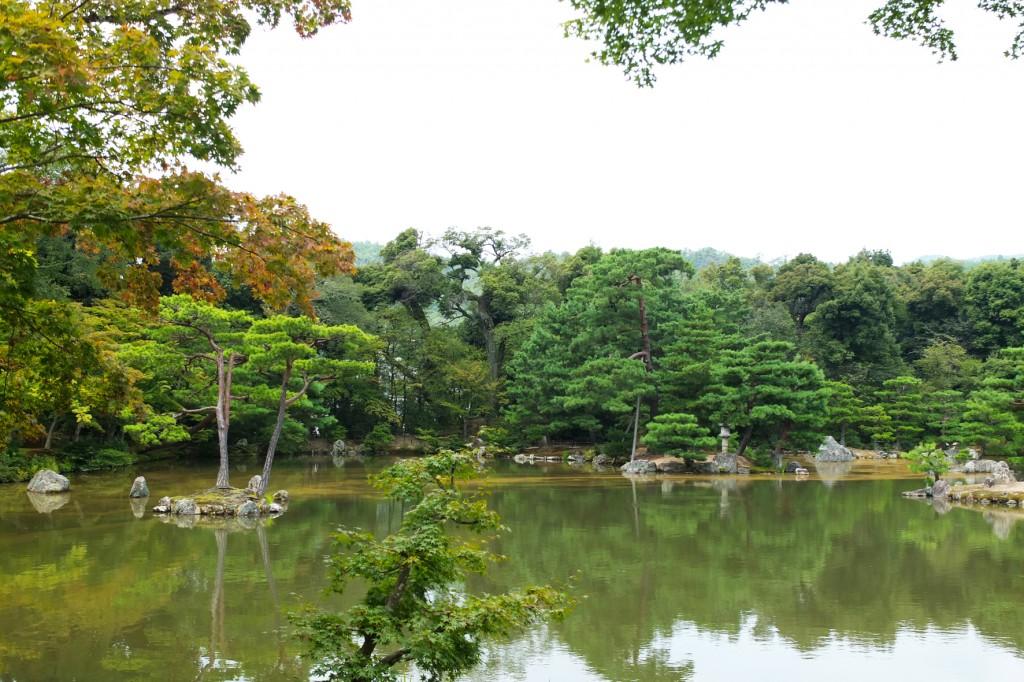 kyoto temple doré