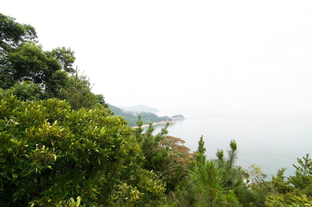 naoshima (12)