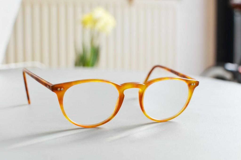 mes nouvelles lunettes (11)