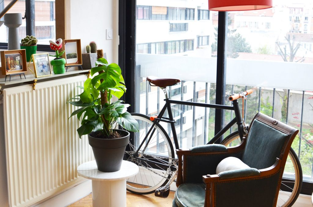 Une plante dans mon salon (1)
