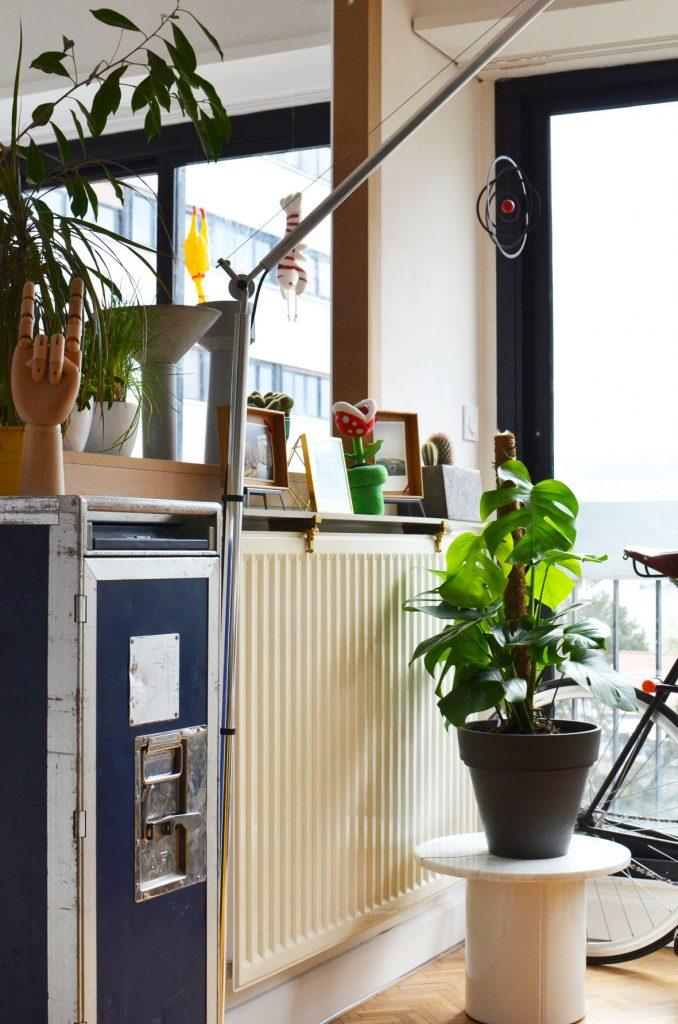Une plante dans mon salon (6)