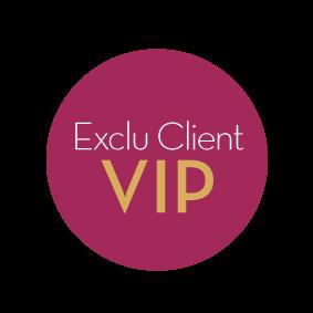 VIP_Logo_FR